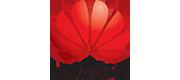 Huawei Repairs Belfast